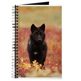 Black wolf Journals & Spiral Notebooks