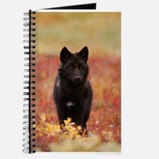Autumn Wolf Journal