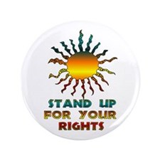 "Stand Up For Your Rights 3.5"" Button"