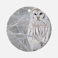 Barred Owl in Winter Round Ornament