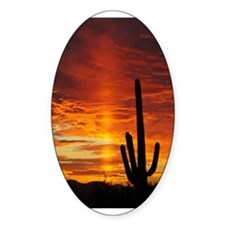 Saguaro Sunset Oval Decal