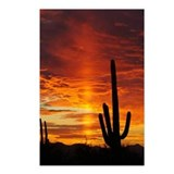 Arizona sunset Postcards
