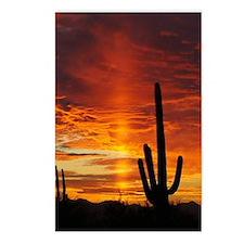 Saguaro Sunset Postcards (Package of 8)