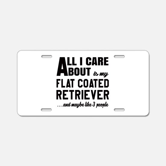 All I care about is my Flat Aluminum License Plate