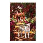 Path / Pitbull Postcards (Package of 8)