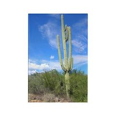 Tall Saguaro Rectangle Magnet (10 pack)