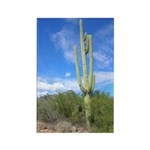Tall Saguaro Rectangle Magnet (100 pack)