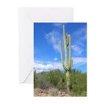 Tall Saguaro Solstice Greeting Cards (Pk of 20)