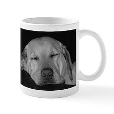 oliverrutherfordlab10904_bw Mugs