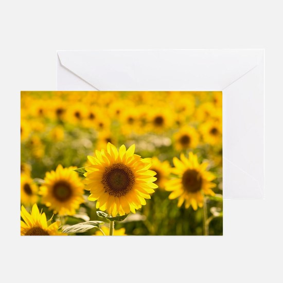 Unique Sunflower Greeting Card