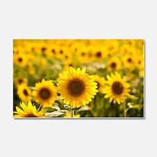 Cute Sunflower Car Magnet 20 x 12