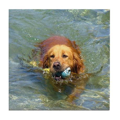 Golden Water Dog Tile Coaster