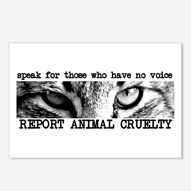 Report Animal Cruelty Cat Postcards (Package of 8)