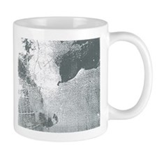Perception Mug