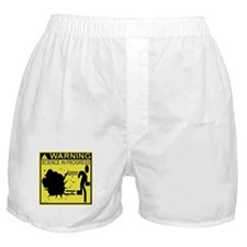 Science In Progress (yellow) Boxer Shorts