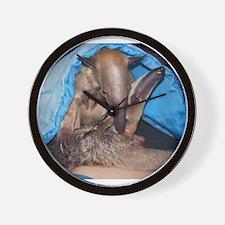 Unique Anteater Wall Clock