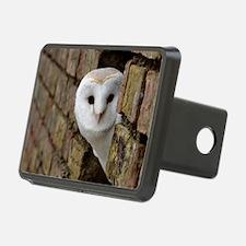 Peek-a-Boo Owl Hitch Cover