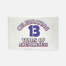 Celebrating 13 Years Rectangle Magnet