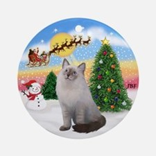 Take Off (A) and Ragdoll cat Ornament (Round)