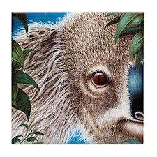 Curios Koala Tile Coaster