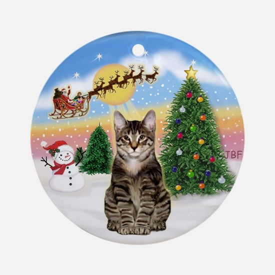 The Take Off (3) tabby (SH) Ornament (Round)