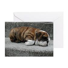 Sleeping Baby Chubbs Cards (Pk of 20)