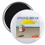 SPRING BREAK BEACH BUM Magnet