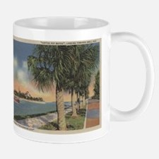 St. Petersburg, FL - Coffee Pot Bayou & Isle Mugs