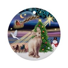 Xmas Magic & Sphynx Cat Ornament (Round)