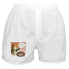 Shiba Turkey Boxer Shorts
