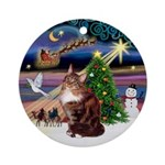 Xmas Magic & Maine Coon (#12) Ornament (Round)