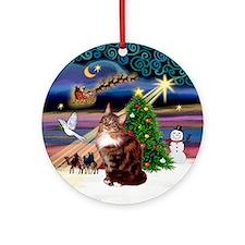 Xmas Magic & Maine Coon (#12) Ornament (Round)