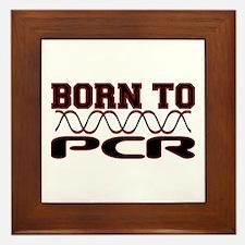Born to PCR Framed Tile
