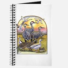 Central Valley Birds Sketching Journal