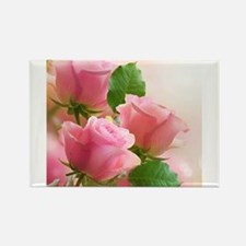 Pink Roses Magnets