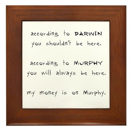 Murphy vs. Darwin Framed Tile