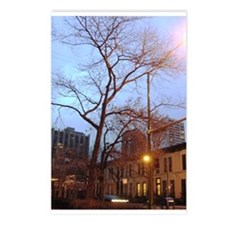 Chicago Tree Postcards (Package of 8)