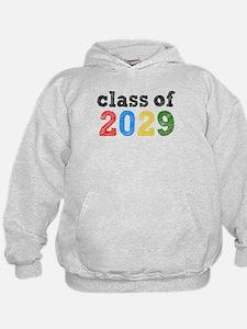 Class of 2029 Hoodie