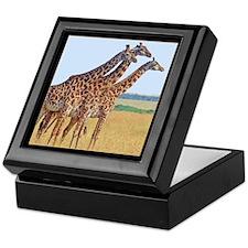 Three Giraffes Keepsake Box