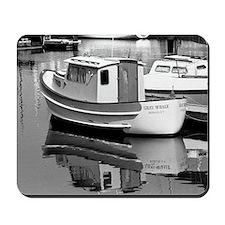 Grey Whale Boat Mousepad
