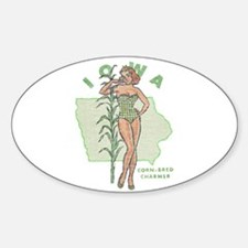 Faded Iowa Pinup Decal