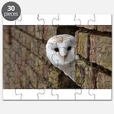 Peek-a-Boo Owl Puzzle