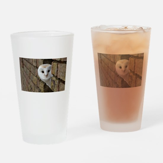 Peek-a-Boo Owl Drinking Glass