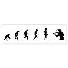 Evolution of Violin Bumper Bumper Sticker