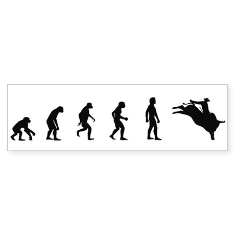 Evolution of Bullriding Bumper Sticker