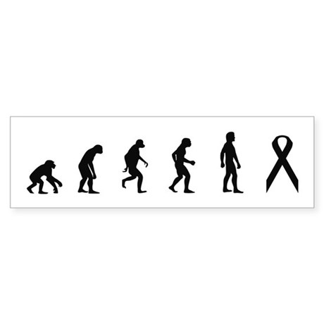 Evolution of Awareness Bumper Sticker