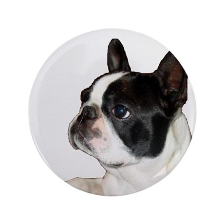 "Boston Terrier - Pleading Eye 3.5"" Button"