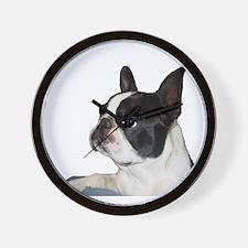 Boston Terrier - Pleading Eye Wall Clock
