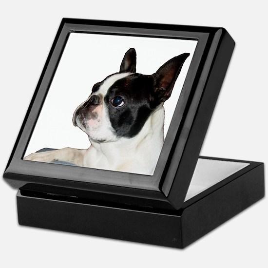 Boston Terrier - Pleading Eye Keepsake Box