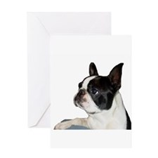 Boston Terrier - Pleading Eye Greeting Card